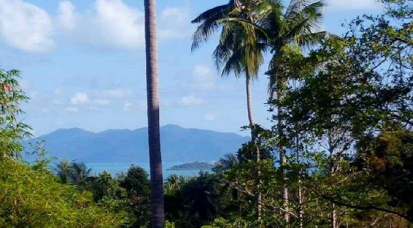 For sale sea view land in Bangrak Koh Samui - 750 sqm