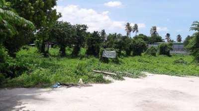 Sukhumvit 62 (Bang chak) Land for sales 4 rai