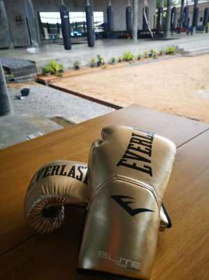 Boxing Bag, boxing gloves, pads, twins backpack