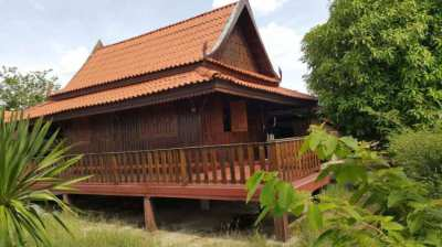 Thai style wooden house with garden  in Surin city.