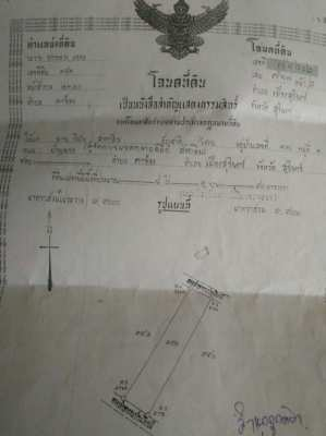 Land for sale in Surin city