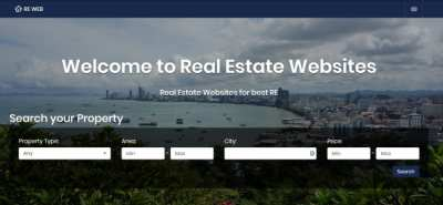 Real Estate Business Website DIY