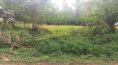 For sale flat land in Lamai Koh Samui - 660 sqm