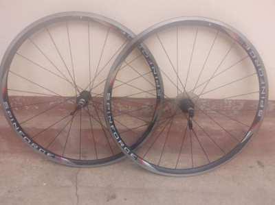 Giant lightweight road bike wheelset