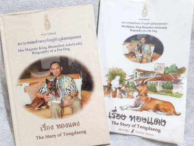 The Story of Tongdaeng - Original and Cartoon Versions