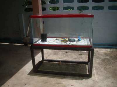 Professional Fish Tank 200l with some equipment