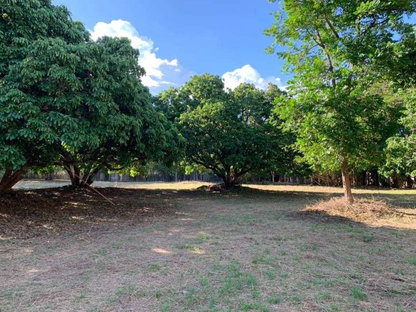 The Perfect Ready to Build Plot in a Fantastic Location