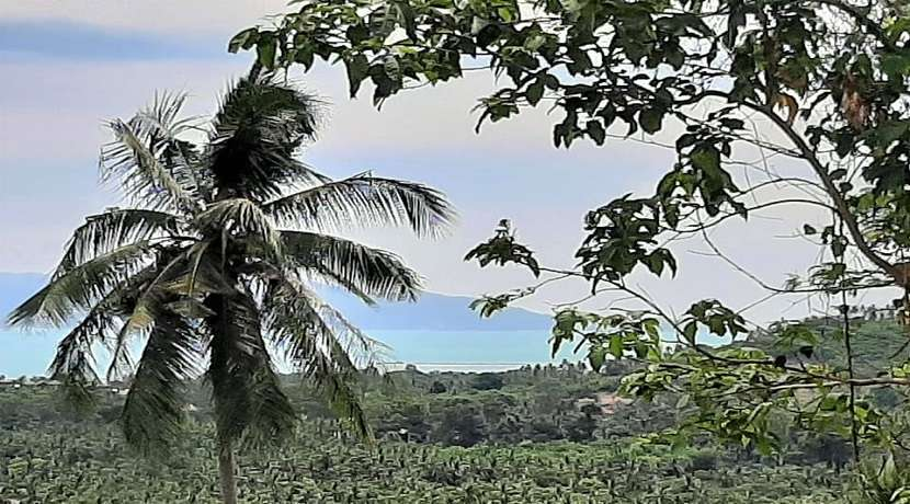 For sale sea view land in Maenam Koh Samui - 1600 sqm