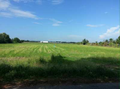Land for sale Sam Khok-Sena Thai Island, Pathum Thani Province