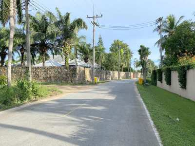 Idyllic palm-grove plot of 10.356 m2 at good Huai Yai location
