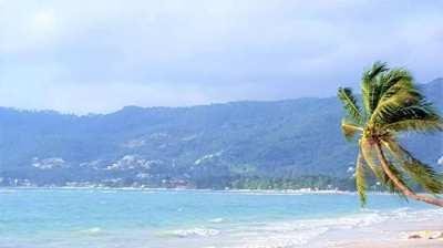 For sale beachfront land in Chaweng Beach Koh Samui - 6400sqm