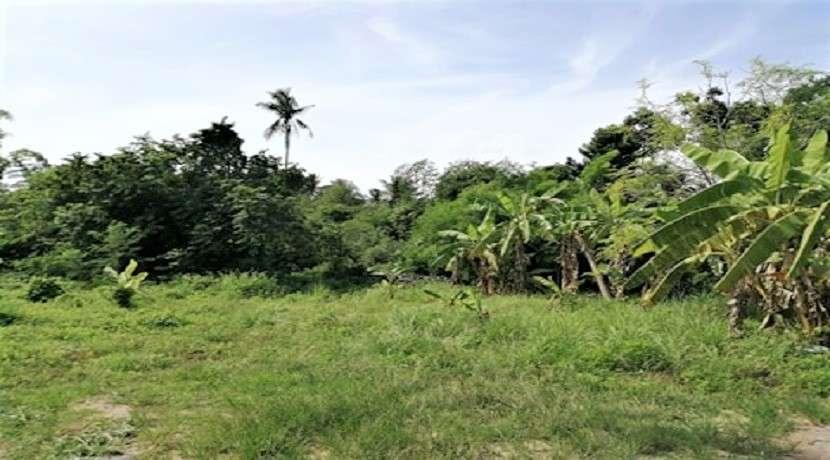 For sale land in Bang Kao / Laem Sor Koh Samui