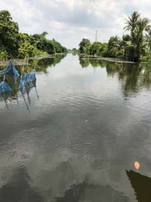 Land near Suvanabhumi for Fish/Shrimp Farm or JV Townhouse Dev't.