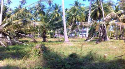 For sale land Taling Ngam in Koh Samui