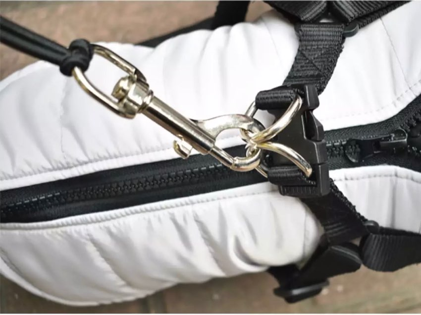 Dog Leash Bicycle Lead Attachment