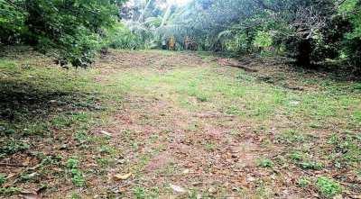Land for sale in Lamai Koh Samui - 400sqm
