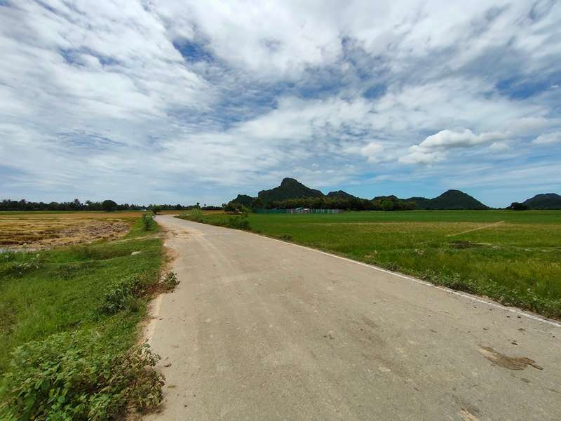 Nice 8 Rai Rice Paddy Land with Easy Access to Highway 4