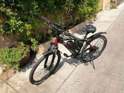 E- bike, E- Bicycle, Trinx 136 M Elite