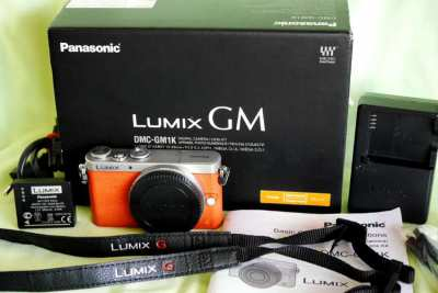 Smallest  interchangeable lens Wi-Fi camera Lumix GM1 in box, 173g