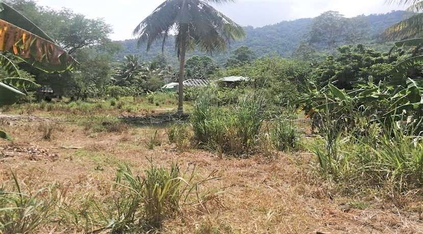 Land for sale in Lamai Koh Samui - 10.400 sqm