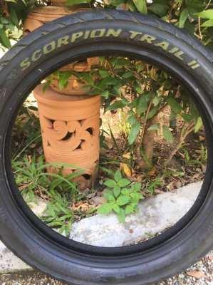Pirelli Scorpion Trail II. 100/90 x 19