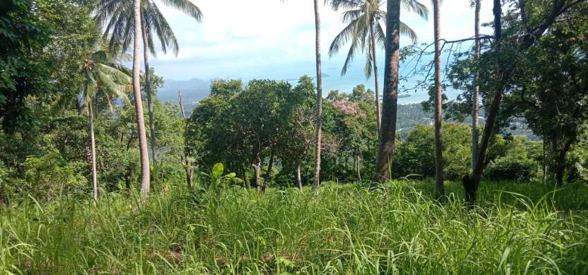 Seaview land 3 rai hillside