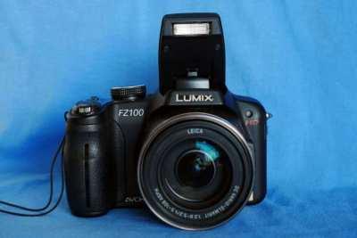 Panasonic Lumix FZ100 25-600mm f/2.8-5.2 Leica DC Vairio-Elmarit Lens