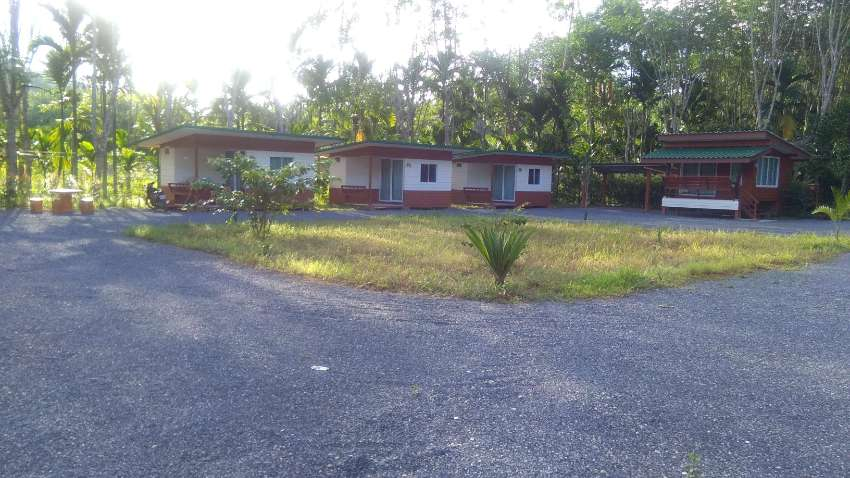 GOOD DEAL HOMESTAY FOR SALE PHATTHALUNG PROVINCE