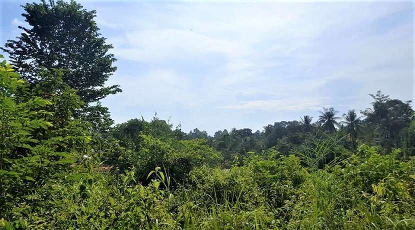 Land for sale with small sea view in Chaweng Koh Samui 1200m² - 3200m²