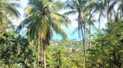 For sale sea view land in Bang Por Koh Samui - 4.664 sqm