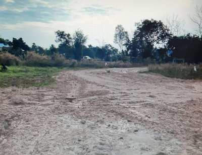 378 sq wa land for sale in Sakon Nakon