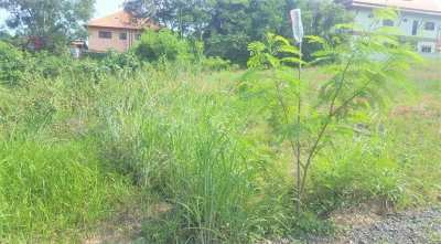 For sale flat land in Bangrak Koh Samui - 528 sqm