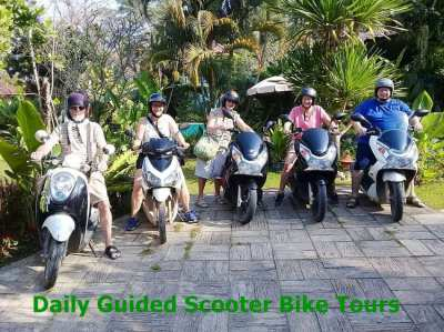 Bicycle-Tour business in Chiang Rai Thailand Reduced price