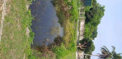 Land /plot for sale 800m² 800,000 baht