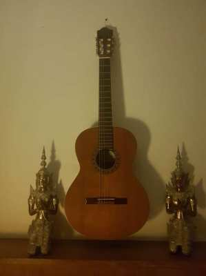 classical guitar and baroque lute lessons