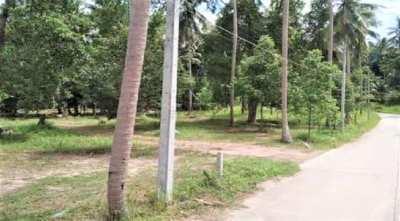 For sale  9210 sqm land in Ban Tai Koh Samui