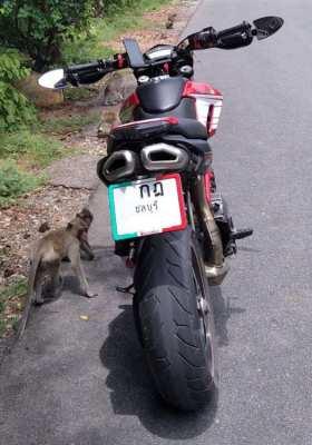 Ducati Hypermotard 796 - FOR SALE