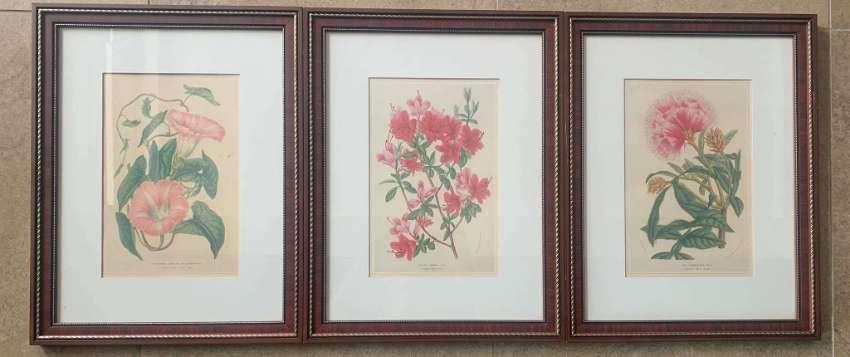 3 portraits of flowers