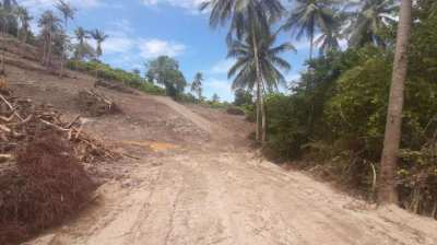 Seaview Land - 8 Rai, 3 Ngan for Sale, Saket, Koh Samui - QUICK SALE