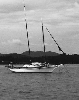 Traditional sailing schooner sailing boat composite wood