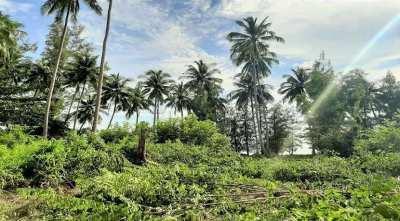 For sale 6.400 sqm seaview land in Lipa Noi Koh Samui
