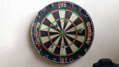 professionell dartboard for sale