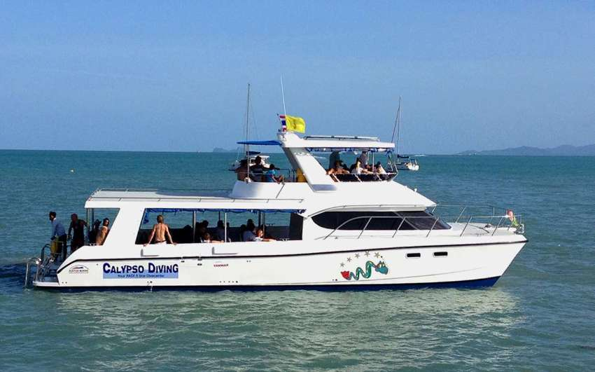 High speed tour and dive catamaran