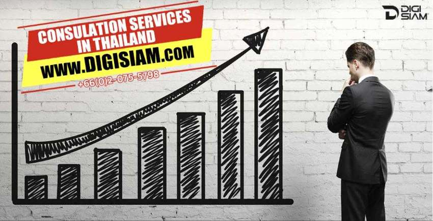 SALES AND MARKETING AND BRANDING CONSULTATION SERVICES