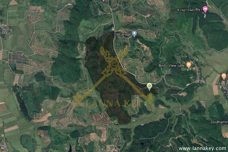 523-3-37 rai of Land for Sale in Mae Chan