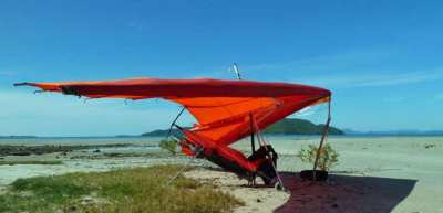 Hang-glider with engine and harness