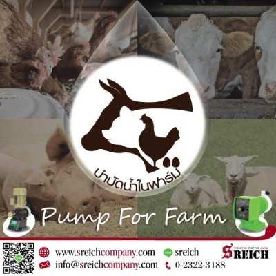 ปั๊มโดสเติมคลอรีน สารละลาย เพื่อการฆ่าเชื้อในฟาร์ม
