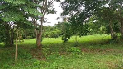 6+ RAI OF LAND WITH BUNGALOW, DEED, ELECTRICITY, WATER, MAE SUAI