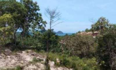 1 RAI SEA AND SUNSET VIEW LAND FOR SALE IN KOH PHANGAN