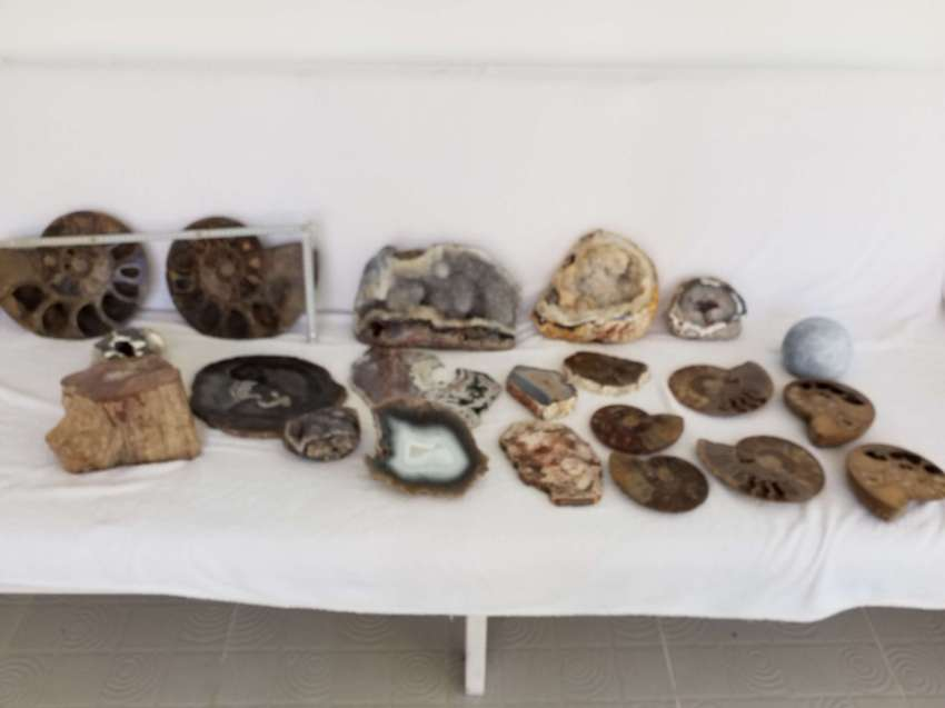 21 piece Minerals and Fossils
